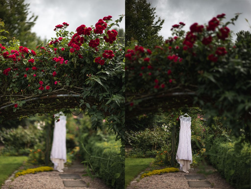 Jack and Katie Antrim elopement wedding dress hanging outside with roses
