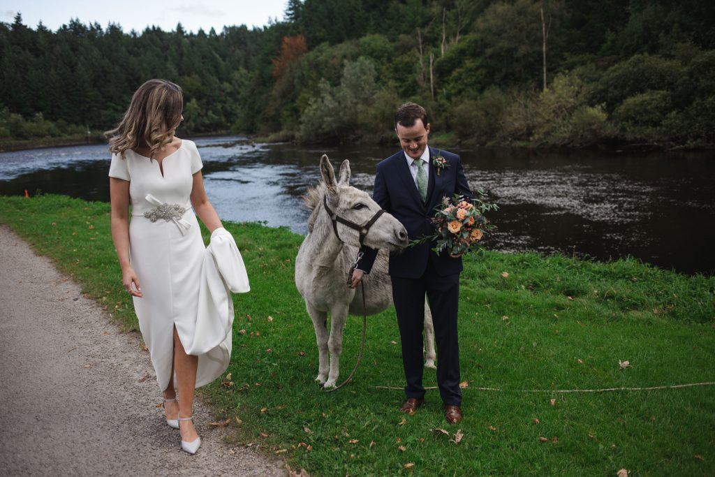 Gemma and Paddy New Ross wedding couple holding a donkey